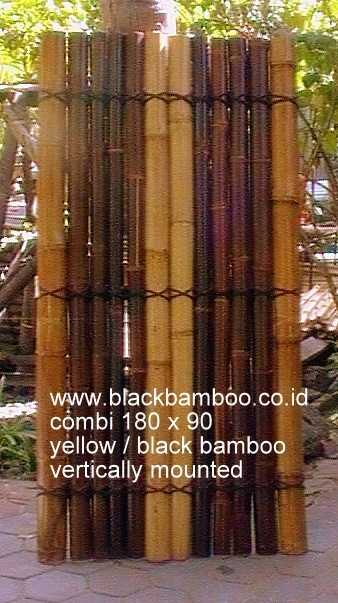 BAMBOO FENCE BLACK AND GOLD